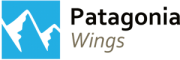 patagonia-wings-180x60